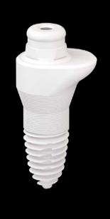SDS Zirconia Implant 1 Piece Oval Ceramic Implant | Natural Dentistry | Dr. Yuriy May Best Ceramic Dentist