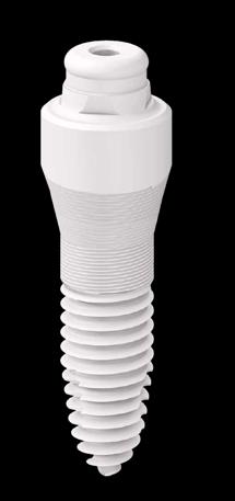 SDS Zirconia Implant 1 Piece Natural Dentistry | Dr. Yuriy May Best Ceramic Dentist