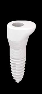 SDS Zirconia Implant 2-Piece Oval Sinus Ceramic Implant Natural Dentistry | Dr. Yuriy May Best Ceramic Dentist